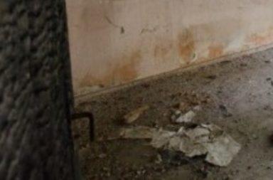 Predsrochno osvoboden zatvornik zberski ubil vazrastna jena